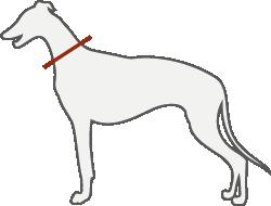 Hundemantel maßgeschneidert