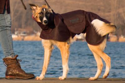 Hundemantel aus Waxed Cotton Maßanfertigung